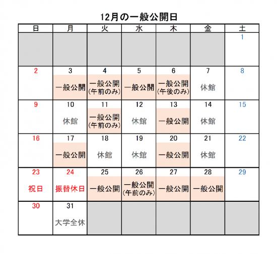 2018年12月の一般公開.png