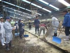 JAの牧場で畜舎管理