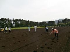 牧草の播種