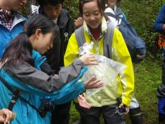 ヤマネを観察する学生