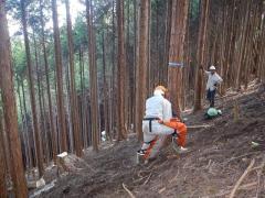 H30年度森林利用デザイン演習:チェーンソーによる伐倒作業