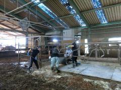 JA施設での牛舎管理