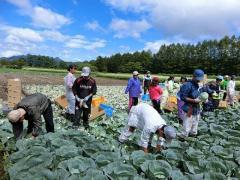 H30年度高冷地植物生産生態学演習