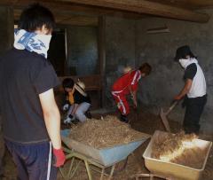 肉牛舎の管理実習