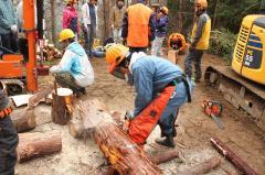 手斧、薪割り機を使用しての薪割り