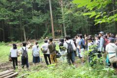 森林巡回の様子