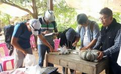 カンボジア北部ウドンメンチェイ州で収集した遺伝資源の調査を行う松島准教授ら