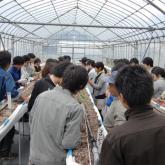 5月8日 野菜育苗管理・定植準備