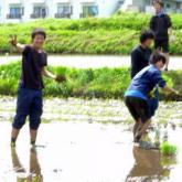 5月16日 田植え02