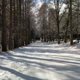 第4回フォトコン 写メ部門 最優秀賞「冬の登校」舩木昇さん