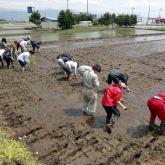 H24.5.18 田植え(食料生産科学科・農学コース)