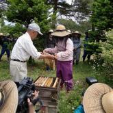 H24.6.7 ミツバチ管理・蜂蜜採取(食料生産科学科・動物生産学コース)