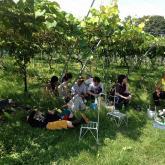 第5回フォトコンテスト農学部キャンパス部門 最優秀賞「農学部の昼休み」石本尚嗣さん