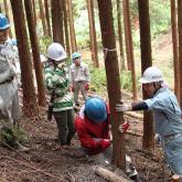 6/19 森林生産実践実習③