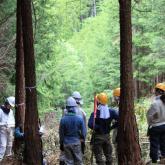 6/19 森林生産実践実習①