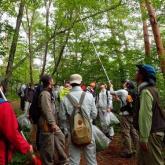 6月 野生植物生態基礎演習②