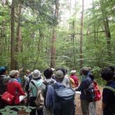 7月 森林環境学演習①