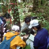 7月 森林環境学演習②