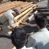 9月 木材工学演習①