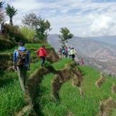 研究・実習部門優秀賞 木下純一「ネパール農家見学」