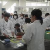 12/15 生化学・分子生物学系実験①