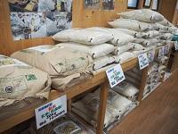 低農薬栽培米(コシヒカリ)10kg