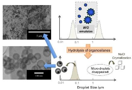 Adsorption&Catalysis Lab :Publications