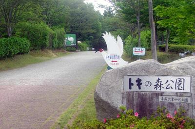 tokinomori_1.jpg