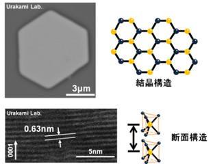 左上:作製した層状物質の一例(電子顕微鏡像) 右上:結晶構造(原子配置)の概略。層状物質の多くは    六角形の原子配置をしており、作製したもの(左上)も    それを反映した形状をしている 左下:断面構造の観察(電子顕微鏡像) 右下:積層構造の概略