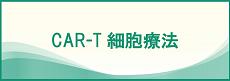 CAR-T細胞療法