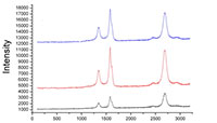 光学的構造解析支援