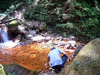 米子川でサンプル採取する森脇准教授