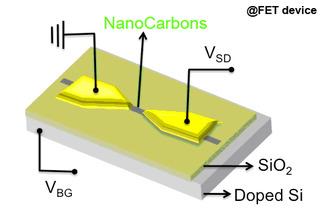 ナノカーボンを基本素材とした3端子FET(電界効果トランジスタ)