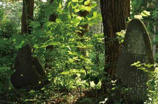 芋の田を開墾したことを記した石碑