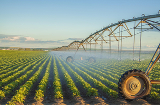 畑に水をまく機械