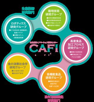 cafi2017_04.png