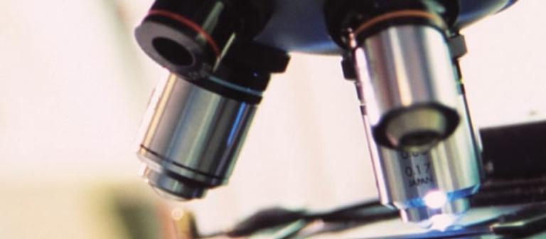 Institute for Biomedical Sciences