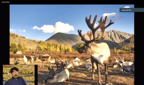 20200731_Reindeer2.png