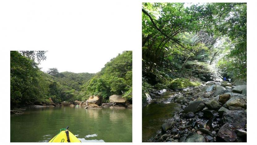 website 2 photos tojo 02 .jpg