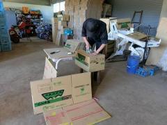 キャベツの収穫箱作り