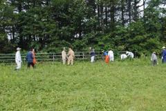放牧地の管理に挑戦