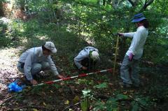 植生断面調査(10月5日):簡易レベル測量と立木調査