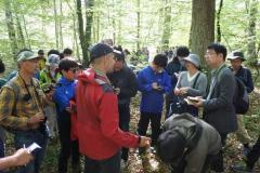 ロッテンブルク林業大学演習林での様子