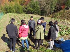 農業現場を視察
