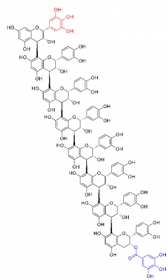 図1:腫瘍活性が確認されたブドウ果柄由来のポリフェノール(エピカテキンオリゴマー)の推定構造(エピガロカテキンとガレートの位置は未決定)