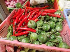 首都プノンペンの市場で販売されているトウガラシやナス