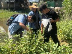 カンポット州の農村での植物遺伝資源探索の様子