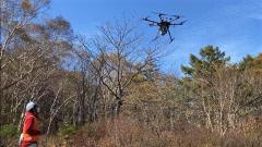 広葉樹林でのドローンレーザ計測と技術公開