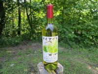 ナイアガラワイン
