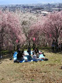 2010春弘法山③【修正版】.jpg